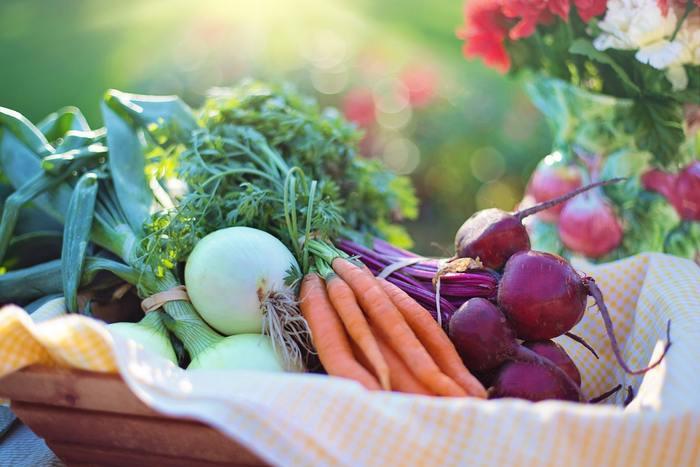 冬野菜冷え症